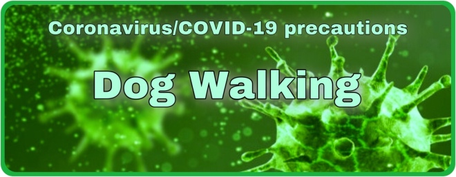 Clever K9s Coronavirus Precautions DognWalking Covid banner