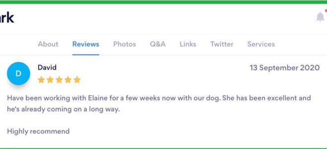 Clever K9s Keighley - Customer Review