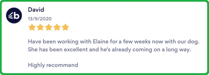 Clever K9s Keighley Customer Review
