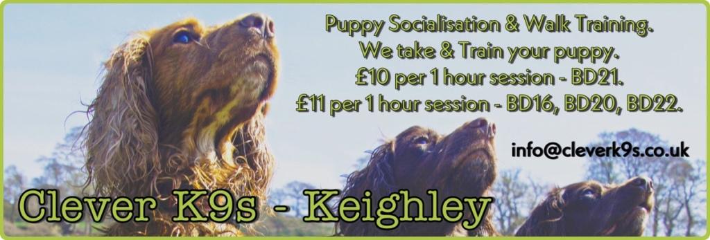 Puppy Socialisation & Walk Training for Keighley, Bingley, Silsden.  BD16, BD20, BD21, BD22.