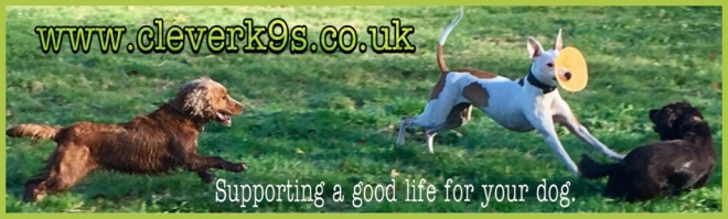 Clever K9s Keighley cleverk9s.co.uk Supporting a good life for your dog